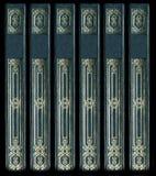 Vecchie spine dorsali del libro del cuoio dell'annata Fotografia Stock Libera da Diritti