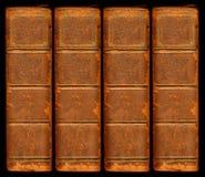 Vecchie spine dorsali del libro del cuoio dell'annata Immagini Stock Libere da Diritti