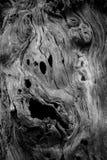Vecchie strutture di legno immagini stock libere da diritti