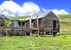 Vecchie tettoia della riduzione di attività ed iarde del bestiame Immagini Stock