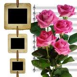 Vecchie trasparenze per la foto con le rose del mazzo Immagini Stock Libere da Diritti