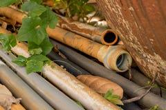 Vecchie tubature dell'acqua d'annata del PVC con la pianta delle foglie di verde - G all'aperto fotografia stock libera da diritti