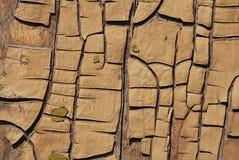 Vecchie vernici su legno Immagini Stock Libere da Diritti
