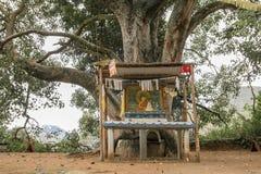 Vecchio albero con l'altare di Buddha Immagine Stock Libera da Diritti