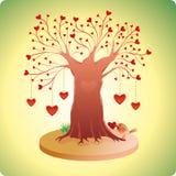 Vecchio albero di amore Immagini Stock Libere da Diritti