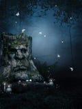 Vecchio albero in foresta incantata Fotografia Stock