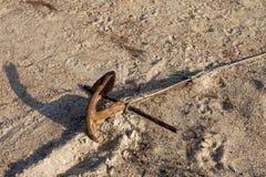 Vecchio ancoraggio arrugginito Fotografie Stock Libere da Diritti