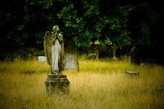 Vecchio angelo del cimitero Fotografie Stock Libere da Diritti