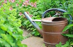 Vecchio annaffiatoio del ferro nel giardino Fotografia Stock Libera da Diritti