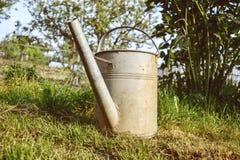 Vecchio annaffiatoio di alluminio in erba nel giardino su tempo di molla Chiuda su dell'innaffiatoio del metallo a primavera Fotografia Stock