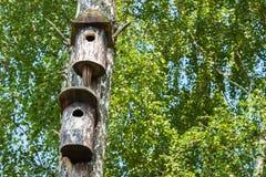 Vecchio aviario semplice due in uno stile rustico Concetto della stagione, pensione, possedere alloggio, dormitorio, multipiano Fotografia Stock