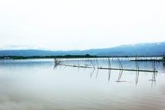 Vecchio bacino dal lago del parco nazionale Fotografie Stock Libere da Diritti