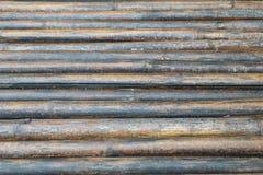Vecchio bambù bagnato Fotografie Stock