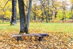 Vecchio banco del legname in un parco Fotografia Stock
