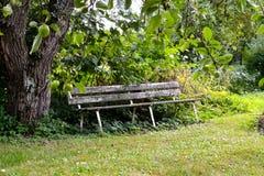 Vecchio banco di legno in giardino Fotografie Stock