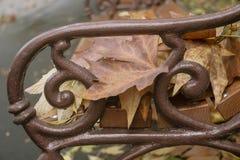 Vecchio banco di legno nel parco della città Fondo d'annata di autunno Immagini Stock