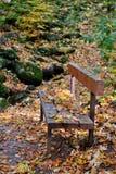 Vecchio banco di legno su un sentiero nel bosco immagini stock