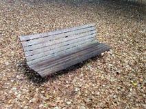 Vecchio banco di parco con le centinaia di foglie Fotografie Stock Libere da Diritti