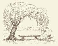 Vecchio banco sotto un albero di salice dal lago Immagini Stock Libere da Diritti
