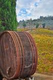 Vecchio barilotto di vino nel paesaggio di autunno della Toscana Immagini Stock Libere da Diritti