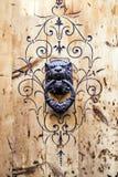 Vecchio battitore di porta a forma di come un leone Fotografie Stock