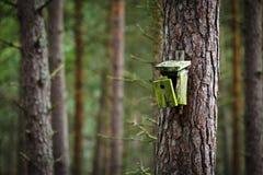 Vecchio birdhouse rotto in foresta Fotografie Stock