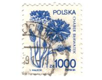 Vecchio bollo polacco con il fiore Immagini Stock
