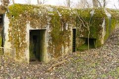 Vecchio bunker concreto muscoso fotografia stock