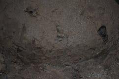 Vecchio calcestruzzo Immagine Stock Libera da Diritti