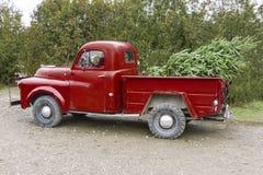Vecchio camioncino rosso d'annata che porta un albero di Natale nell' immagine stock
