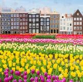 Vecchio canale di Amsterdam Fotografie Stock