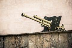 Vecchio cannone Immagini Stock Libere da Diritti