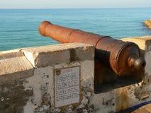 Vecchio cannone Fotografie Stock Libere da Diritti