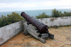 Vecchio cannone Fotografia Stock Libera da Diritti