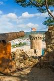 Vecchio cannone alla fortezza Fotografia Stock Libera da Diritti
