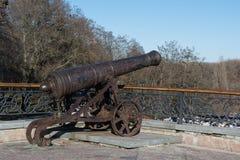 Vecchio cannone arrugginito nel parco Fotografie Stock