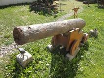 Vecchio canone Immagini Stock