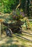 Vecchio carretto rurale con erba asciutta ed i wildflowers Fotografia Stock