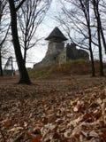 Vecchio castello di Nevytsky Fotografie Stock Libere da Diritti