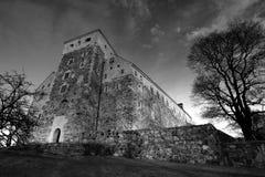 Vecchio castello di pietra a Turku Fotografia Stock Libera da Diritti