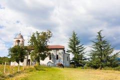 Vecchio cavallo della costruzione di chiesa Fotografia Stock Libera da Diritti