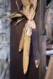 Vecchio cereale che appende fuori dalla parete della costruzione Immagine Stock