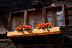Vecchio chalet di legno in Svizzera con i fiori davanti alle finestre immagini stock libere da diritti