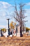 Vecchio cimitero con i vecchi alberi guasti spettrali Fotografia Stock Libera da Diritti
