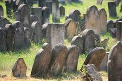 Vecchio cimitero ebreo in Holesov Fotografie Stock Libere da Diritti
