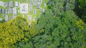Vecchio cimitero protestante Siluetta dell'uomo Cowering di affari video d archivio