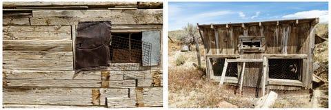 Vecchio collage di colpo del pollo della costruzione del ceppo quadrato Immagini Stock