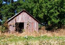 Vecchio colore rosso liberato di in alberi ed in erbacce Fotografia Stock