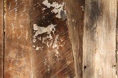 Vecchio comitato di legno sopravvissuto Immagine Stock