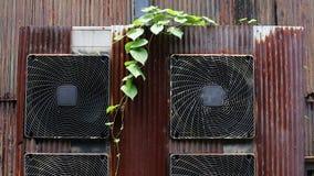 Vecchio compressore d'aria con le foglie di vite video d archivio
